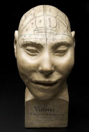 Phrenological Head, c1825