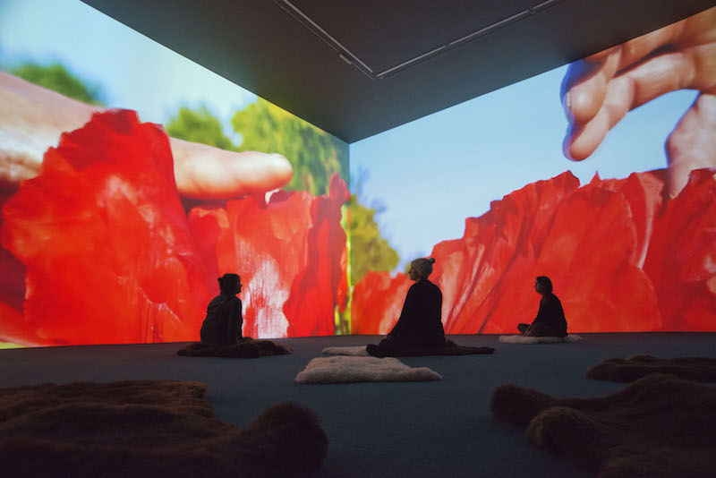 Installation view, Pipilotti Rist's 'Stay Stamina Stay', Hauser & Wirth Somerset