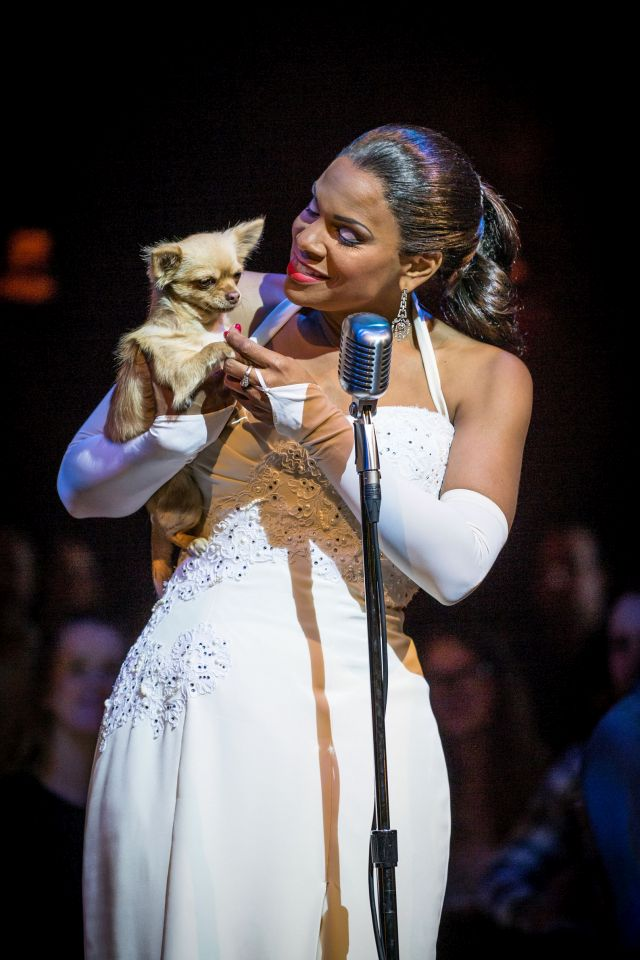Audra McDonald, Lady Day at Emerson's Bar and Grill