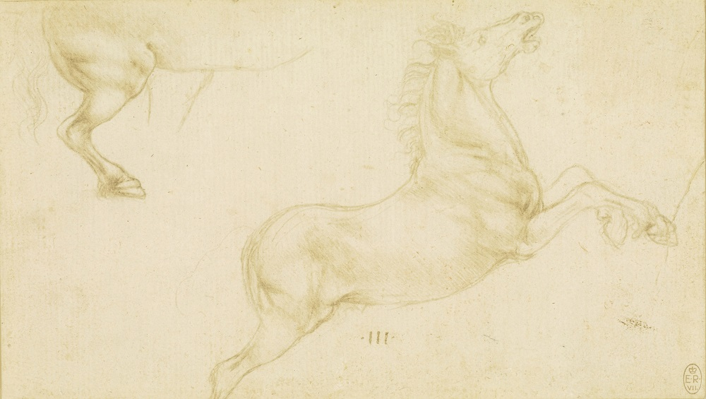 Leonardo da Vinci, Studies of Horses, c.1480-81  Credit: Royal Collection Trust/(c) Her Majesty Queen Elizabeth II 2019