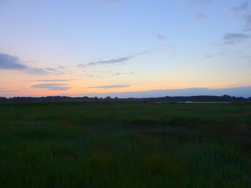 Snape marshes at 3.30am