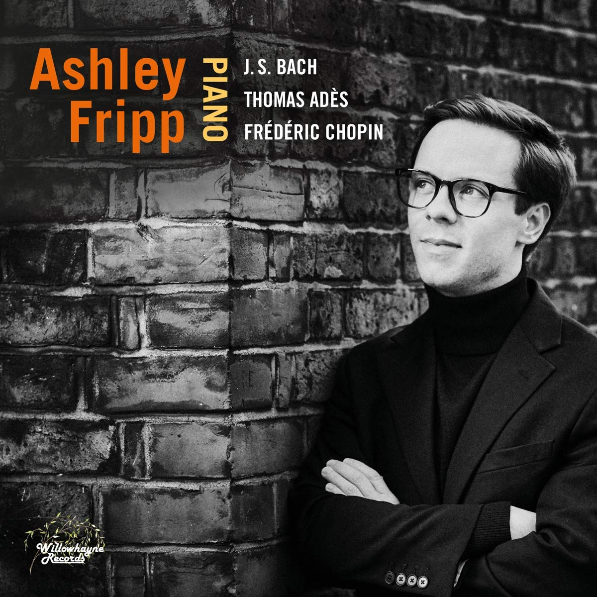 Ashley Fripp