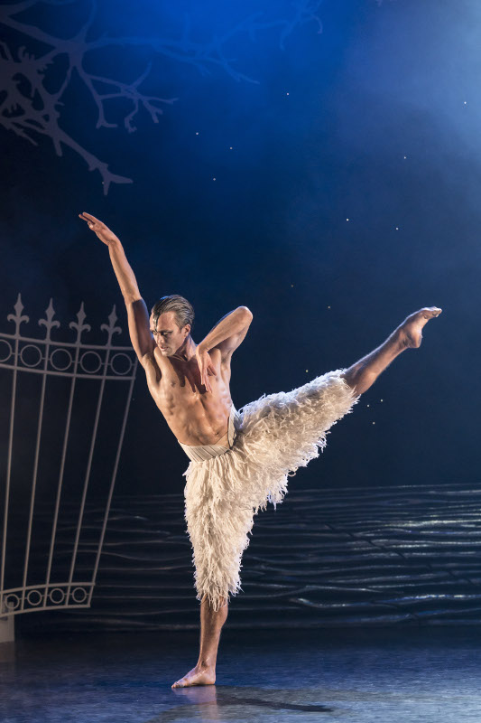 Matthew Ball as the Swan in Matthew Bourne's Swan Lake. Photo by Johan Persson.
