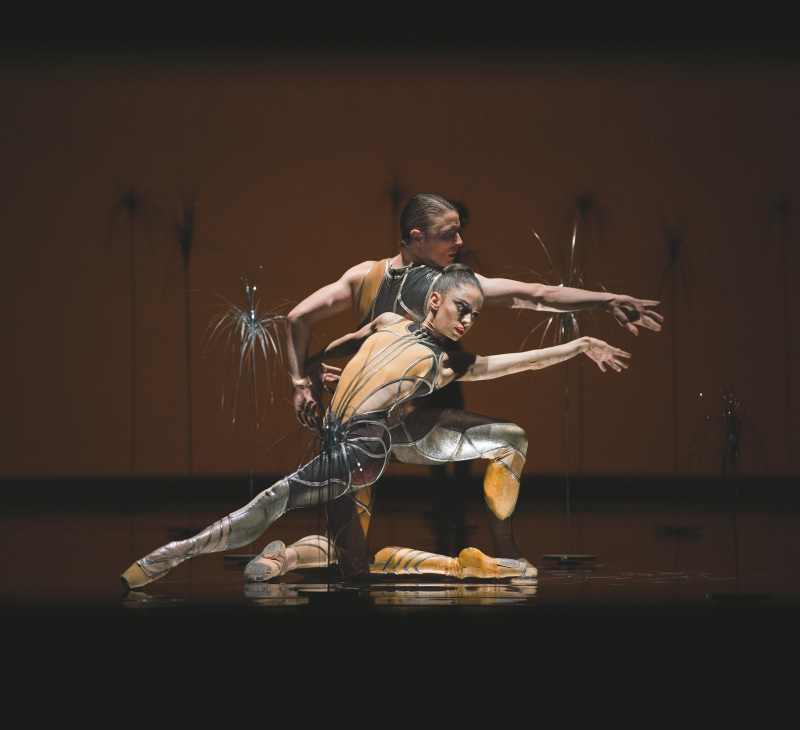Dores Andre and Luke Ingham in 'Björk Ballet'