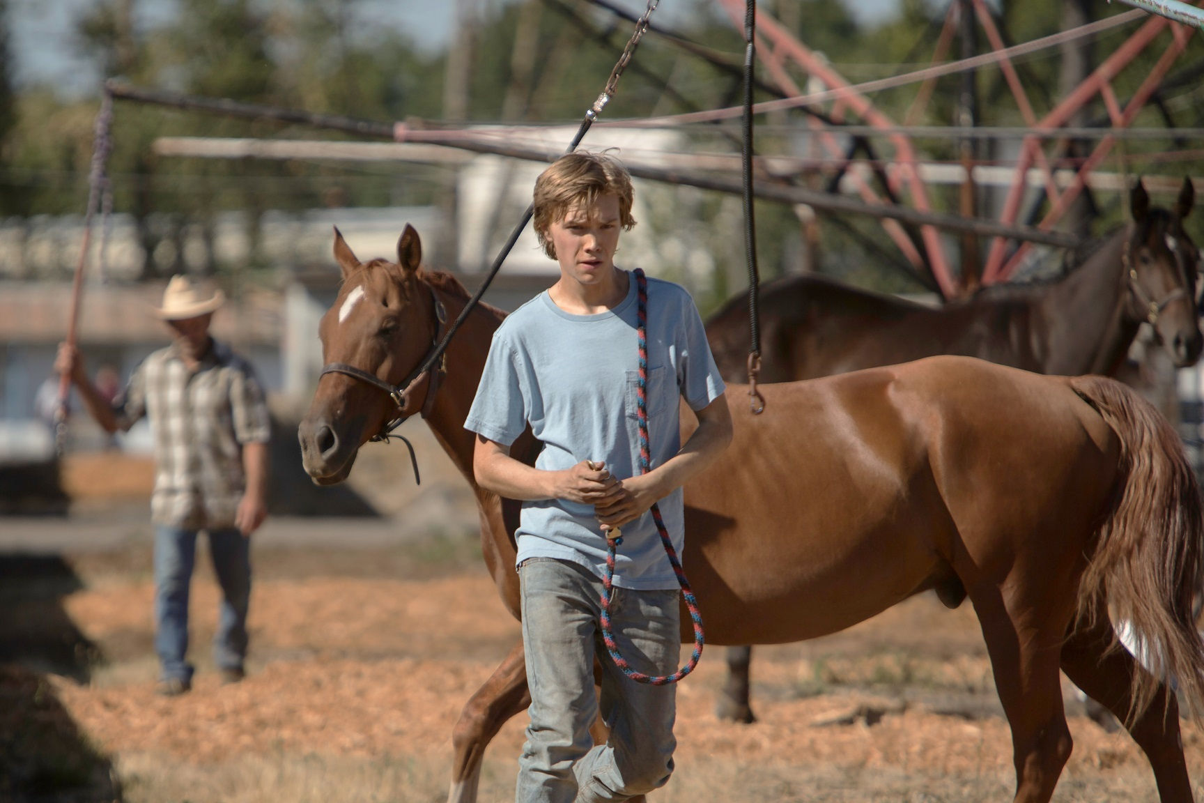 Charley (Charlie Plummer) in Lean On Pete
