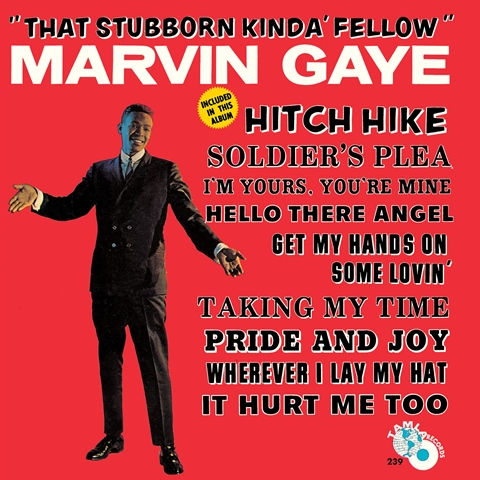 Marvin Gaye That Stubborn Kinda' Fellow