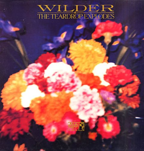 The Teardrop Explodes Wilder