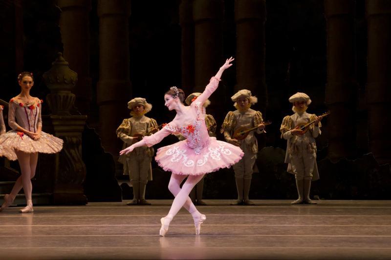 Resultado de imagem para sleeping beauty ballet